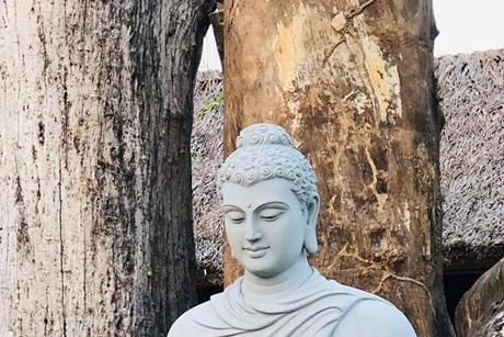 Niệm Phật hàng ngày có tốt không?