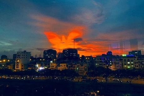 Phượng hoàng lửa xuất hiện ở Sài Gòn là điềm gì?